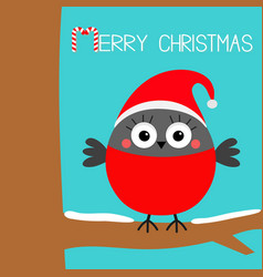 merry christmas bullfinch winter red feather bird vector image
