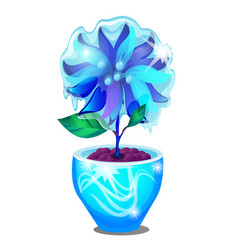 potted flower covered with icy glaze isolated on vector image