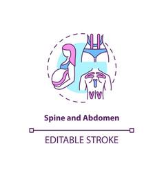 Spine and abdomen concept icon vector