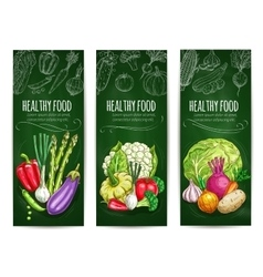 Vegetables sketch on banners Healthy food vector