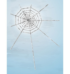spider web with shadow vector image vector image