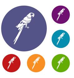 brazilian parrot icons set vector image vector image