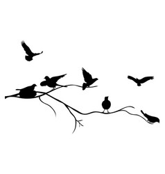 bird black vector image