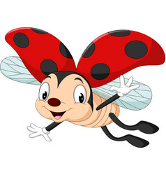 cartoon ladybug flying vector image
