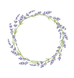Circle lavender flowers vector
