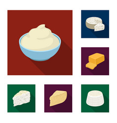different kind of cheese flat icons in set vector image