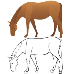 Horse outline and color vector image vector image