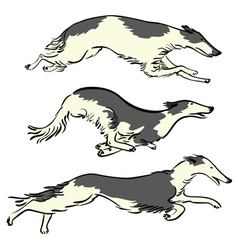 runningdogs vector image