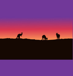 Silhouette landscape kangaroo with beauty sky vector