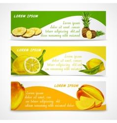 Tropical fruits banner set vector image