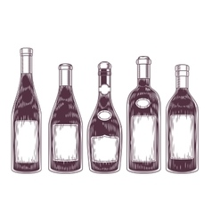 collection of wine bottles vector image vector image