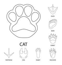 Design foot and footprint sign vector