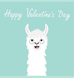 happy valentines day llama alpaca animal face vector image