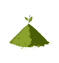 pile matcha tea powder with tea leaves vector image