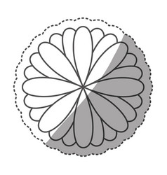 Sticker monochrome contour with oval petals vector