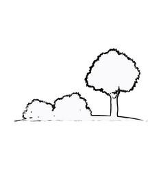 tree bushes natural ecology sketch vector image vector image