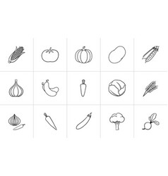 agriculture food hand drawn sketch icon set vector image