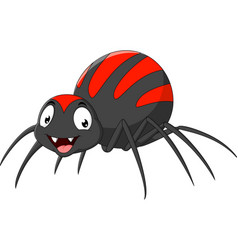 Cartoon funny spider vector