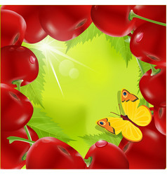 frame of cherry vector image vector image