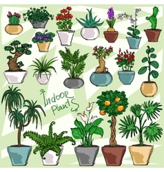 Indoor plants set vector