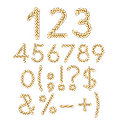 Numbers and signs of braids vector