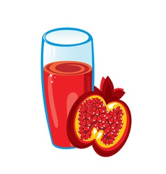 pomegranate juice vector image