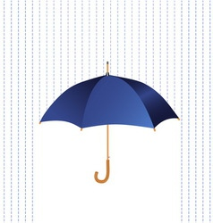 Umbrella icon with rain vector image