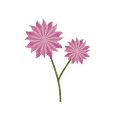 flower aster decoration image sketch vector image vector image