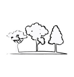 trees plant natural forest image sketch vector image vector image