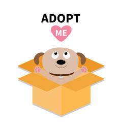 adopt me dont buy dog inside opened cardboard vector image