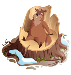 brown funny woodchuck sitting on stump groundhog vector image