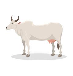 Cartoon cow farm animal vector