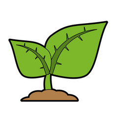 green plant sprout icon imag vector image