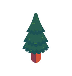 green spruce in flat style vector image