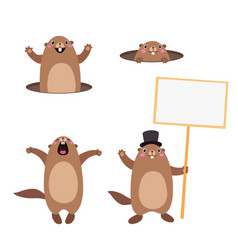 groundhog set 3 flat vector image