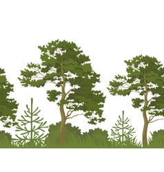 Seamless background summer forest vector