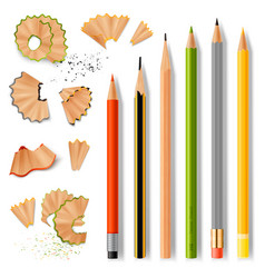 Sharpened wooden pencils and shavings vector