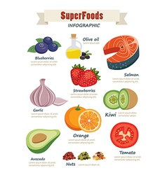 super food infographic flat design vector image