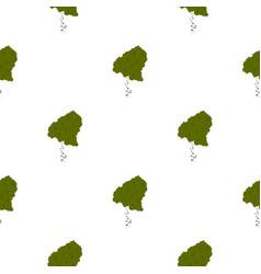 Wood birch pattern flat vector