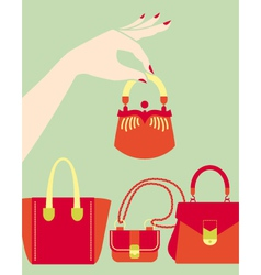 bag issue vector image