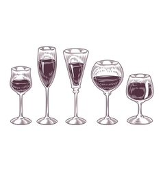 collection of wine glasses vector image vector image
