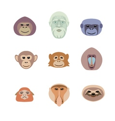 Different monkey flat icon set vector image