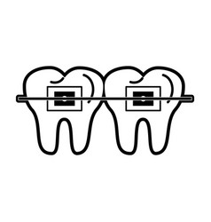 Molars with braces dentistry related icon image vector