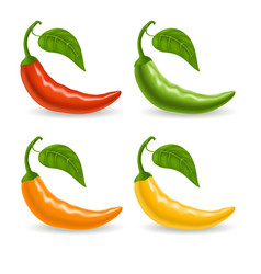 set with multicolor peppers isolated on white vector image