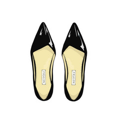 Womens black shoes with pointed toe vector