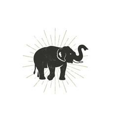 elephant icon vintage hand drawn wild animal vector image vector image