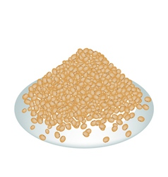 A Lot of Soy Bean on White Plate vector