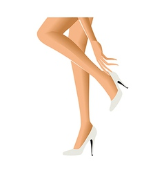 A womans lower body vector image