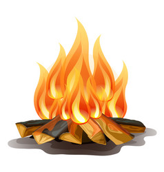 Camp fire isolated on white background cartoon vector