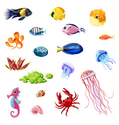 cartoon colorful sea life set vector image